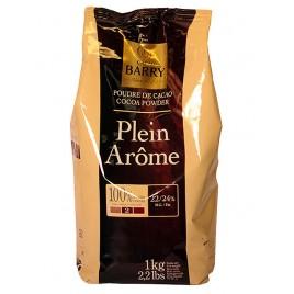 Какао-порошок Plein Arôme (2*)